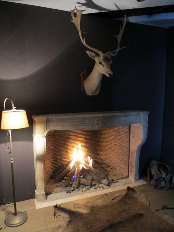 Cosy Flame Gas Fires Built In Inserts And Fireplace