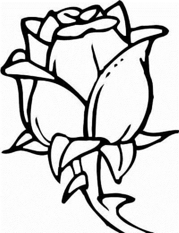 rose flower coloring pages for kids | Coloring Kids | artesanato ...