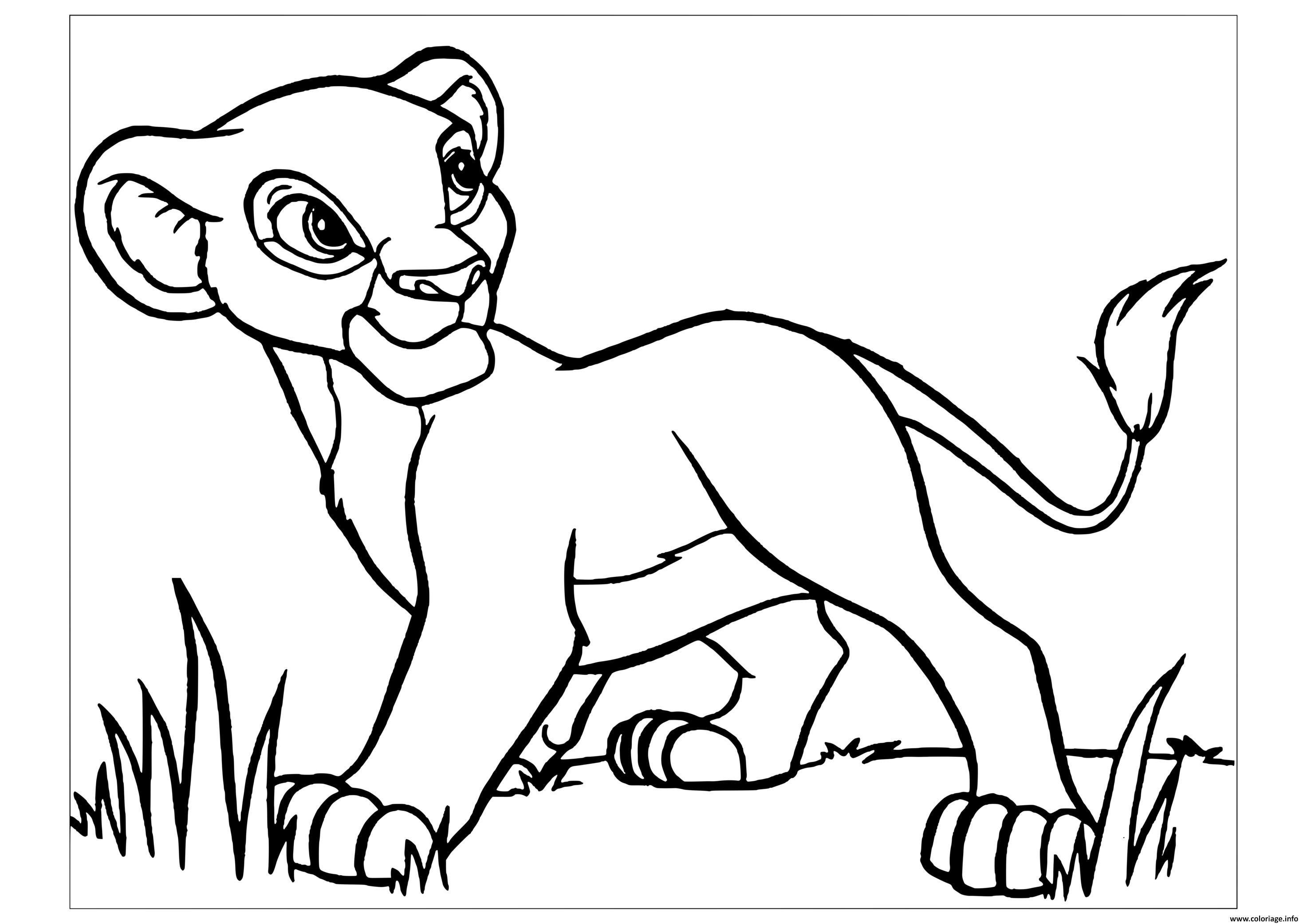 Coloriage simba dans le roi lion 13 hakuna matata à imprimer  Lion