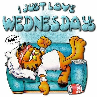 It S Wednesday Garfield Quotes Wednesday Greetings Garfield And Odie