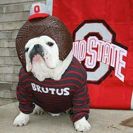 0dfb796429a34 The Ohio State University | Organizations We Support | Buckeyes ...