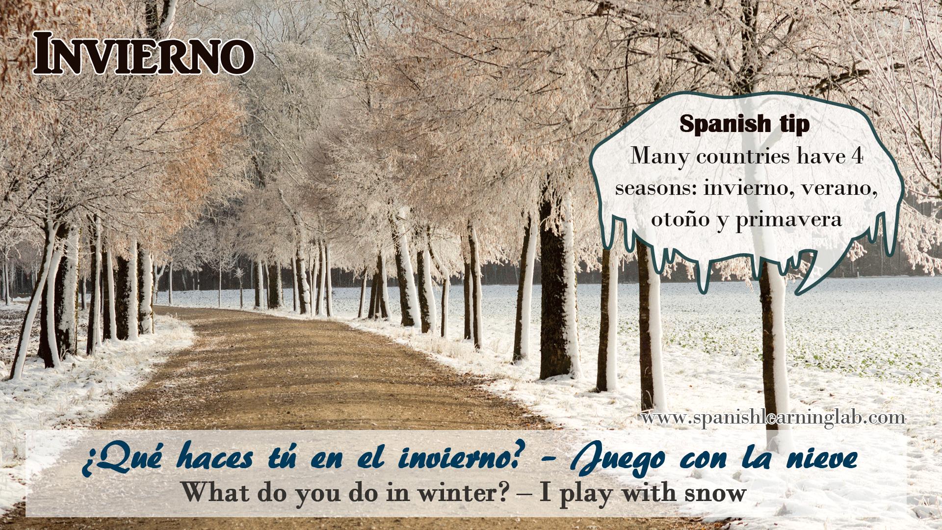 La Nieve Snow Es Lo Que Identifica El Invierno Winter