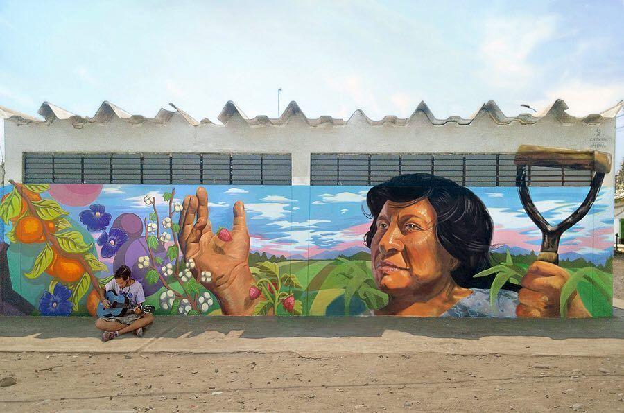 Great mural by @colectivomdh #streetart #peru