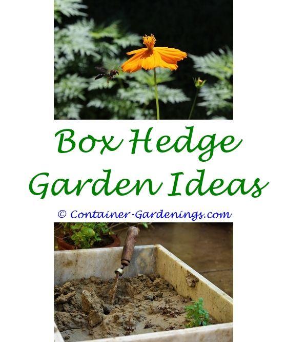 Garden Landscaping Ideas Adelaide   Alfresco Garden Ideas.ideas Of Secret Garden  Landscaping 4 Home