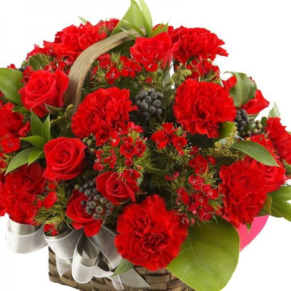 Send Flowers To Bangalore Payal Kumari Red Carnation Carnations Flower Delivery