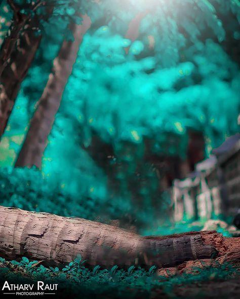 Dslr Background Images Hd Hd Download Dslr Background Images Hd Hd Download In 2020 Dslr Background Images Love Background Images Blur Photo Background