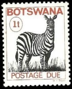 Zebra (Equus sp.)