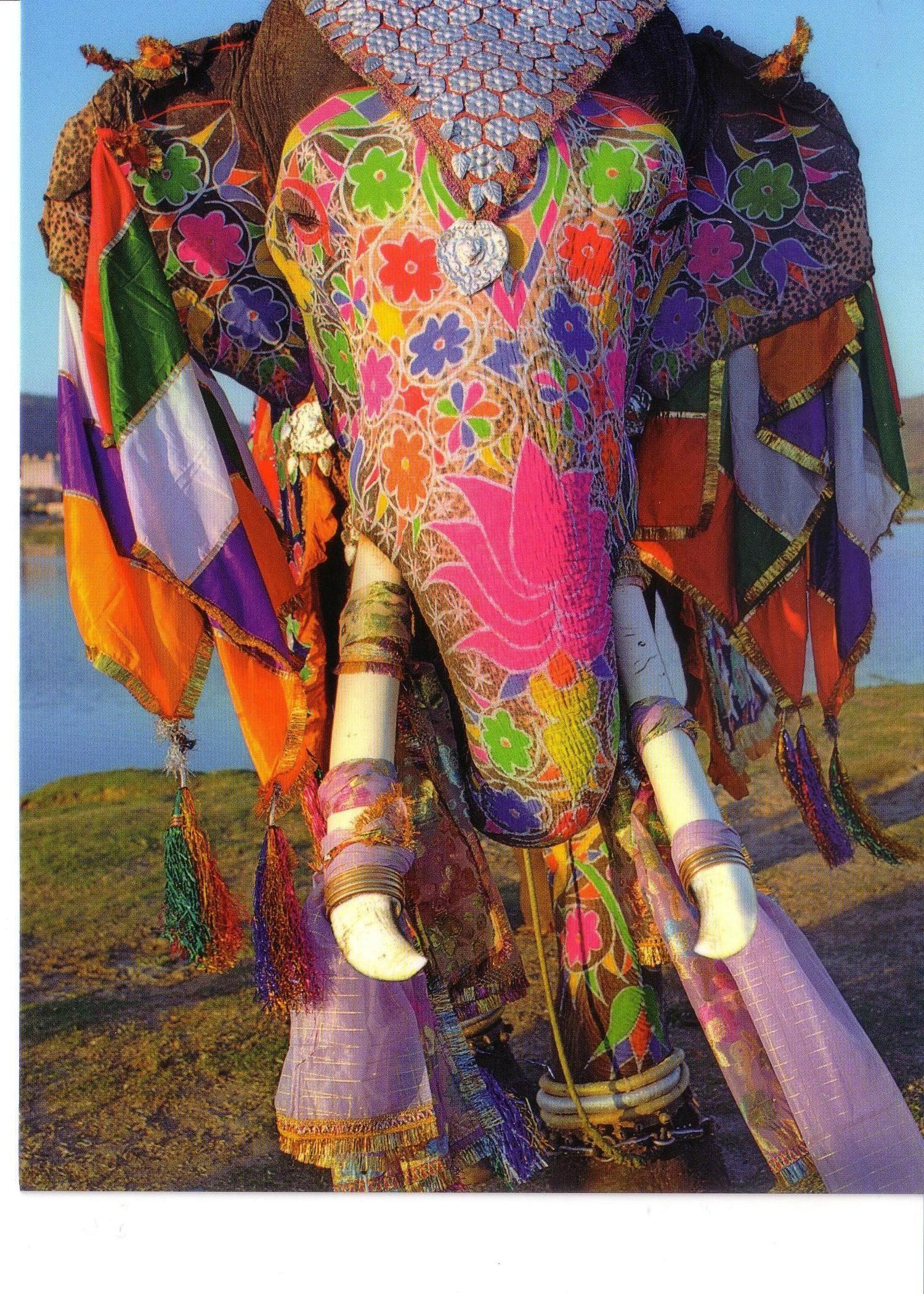 Elephant En Inde Signification eléphant paré pour holi | Éléphants peints, peinture d