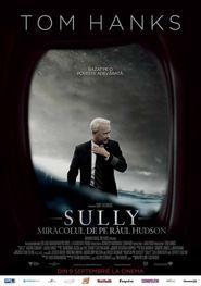 Sully Miracolul De Pe Raul Hudson 2016 Online Subtitrat In Romana Tom Hanks Movies 2016 Good Movies