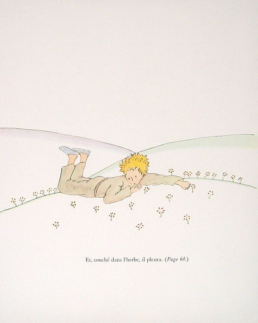 The Little Prince Antoine De Saint Exupery French Caption Etsy The Little Prince Butterfly Books Vintage Children S Books