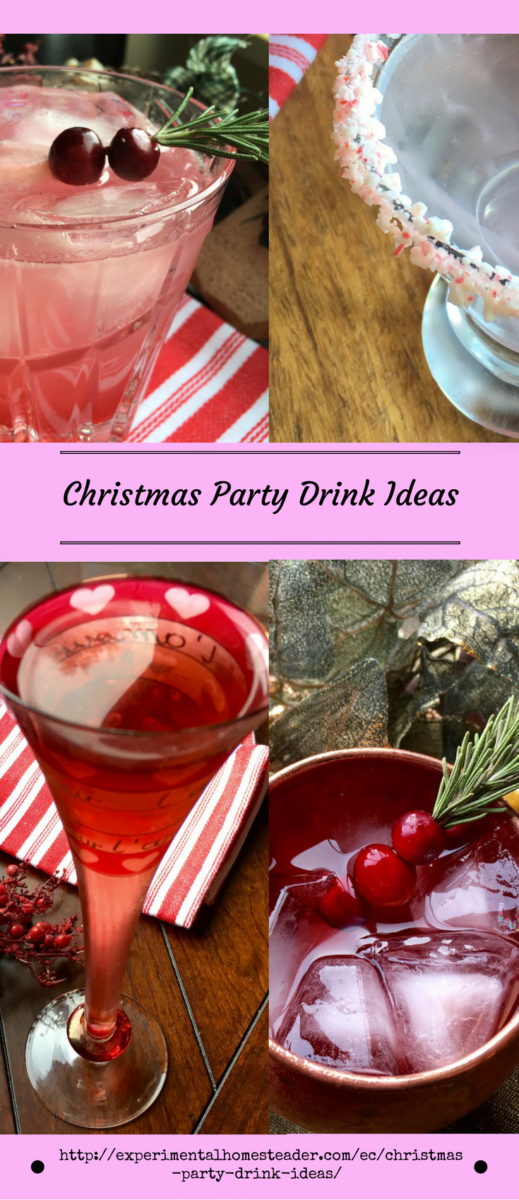 Drink Ideas For Christmas Party Part - 47: Christmas Party Drink Ideas