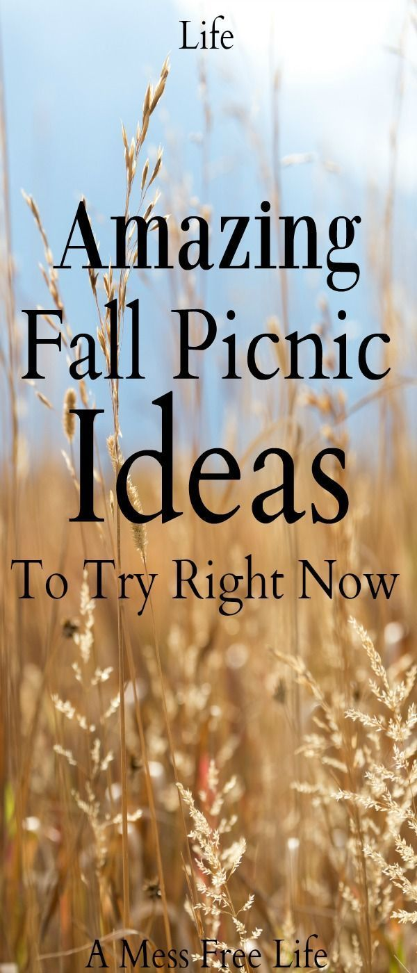 Amazing Fall Picnic Ideas To Try Right Now #familypicnicfoods Fall is the perfect time for a picnic. We've got amazing ideas to kick off your creativity. | Food | Basket | Activities | Outdoors | Family #familypicnicfoods Amazing Fall Picnic Ideas To Try Right Now #familypicnicfoods Fall is the perfect time for a picnic. We've got amazing ideas to kick off your creativity. | Food | Basket | Activities | Outdoors | Family #familypicnicfoods