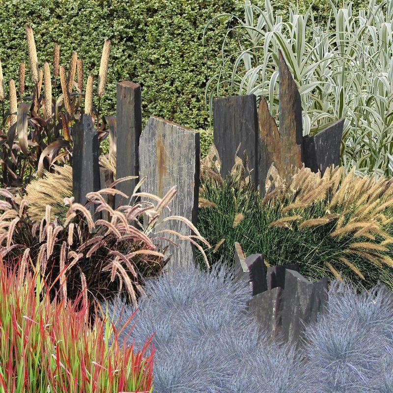 Am nager un massif de gramin es jardin pinterest for Parterre de plantes sans entretien