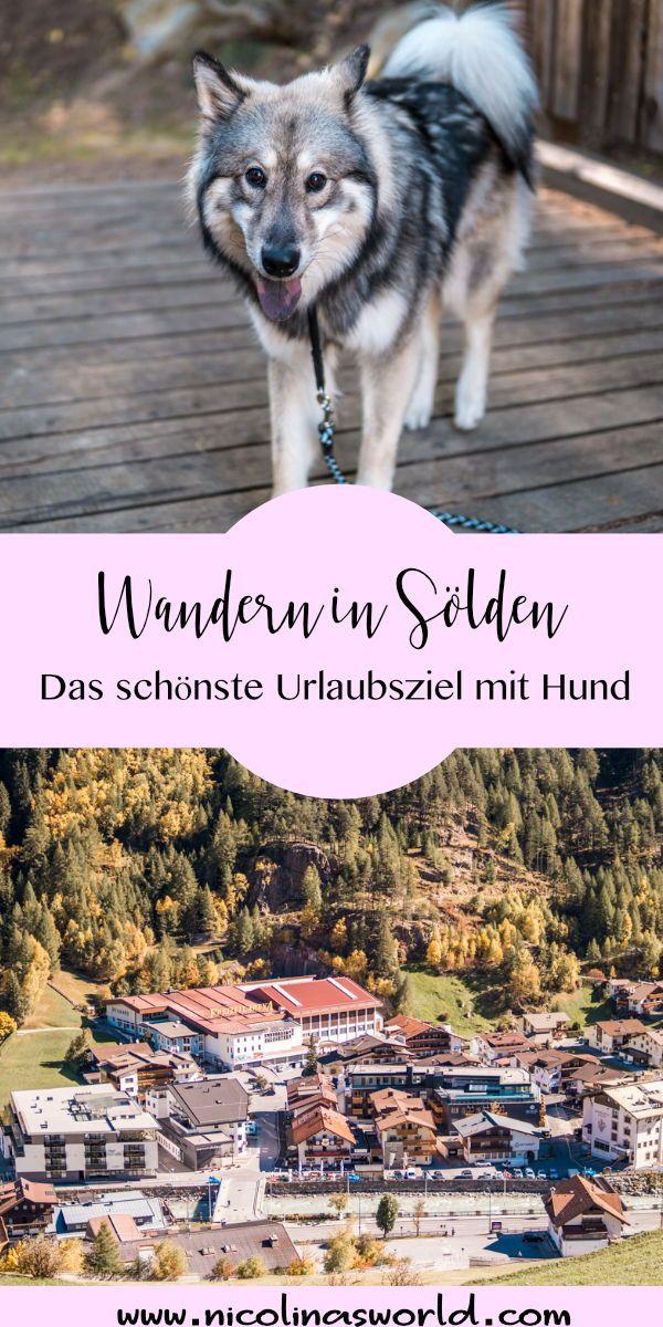 Wandern In Solden Reisen Mit Hund Nicolinasworld Reisen Hunde Urlaub Mit Hund