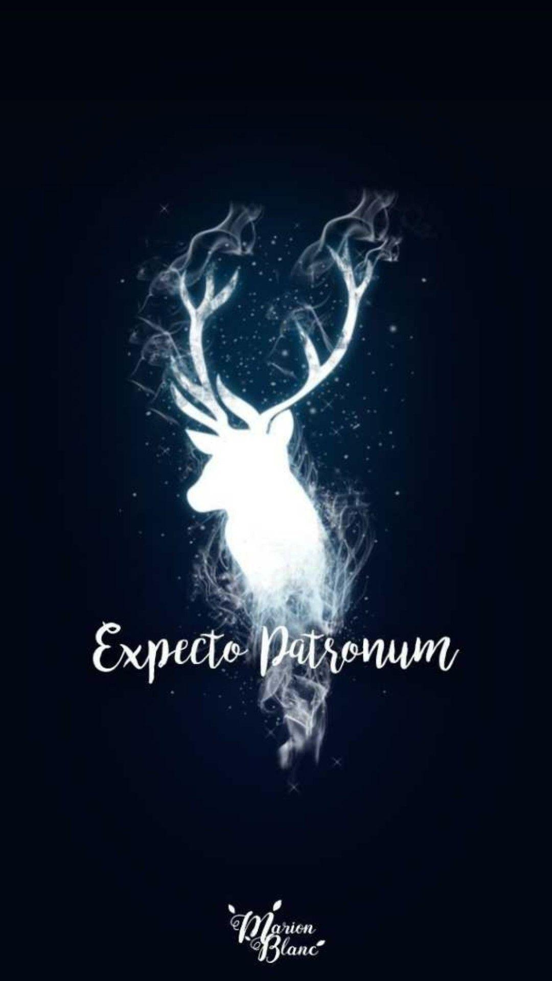 Fantastic Wallpaper Harry Potter Laptop - e37bec35209d0c38a8e0fa57c6efcbb2  You Should Have_889089.jpg