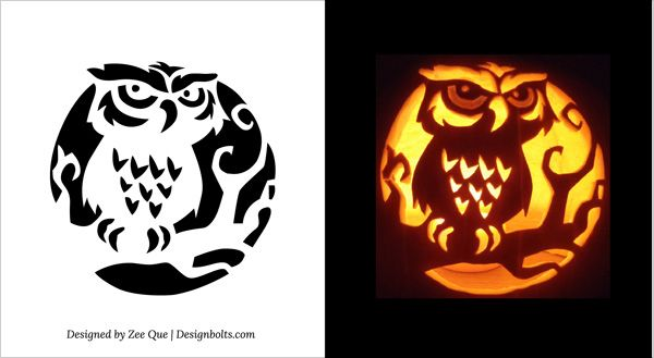 Best owl pumpkin stencil ideas on pinterest