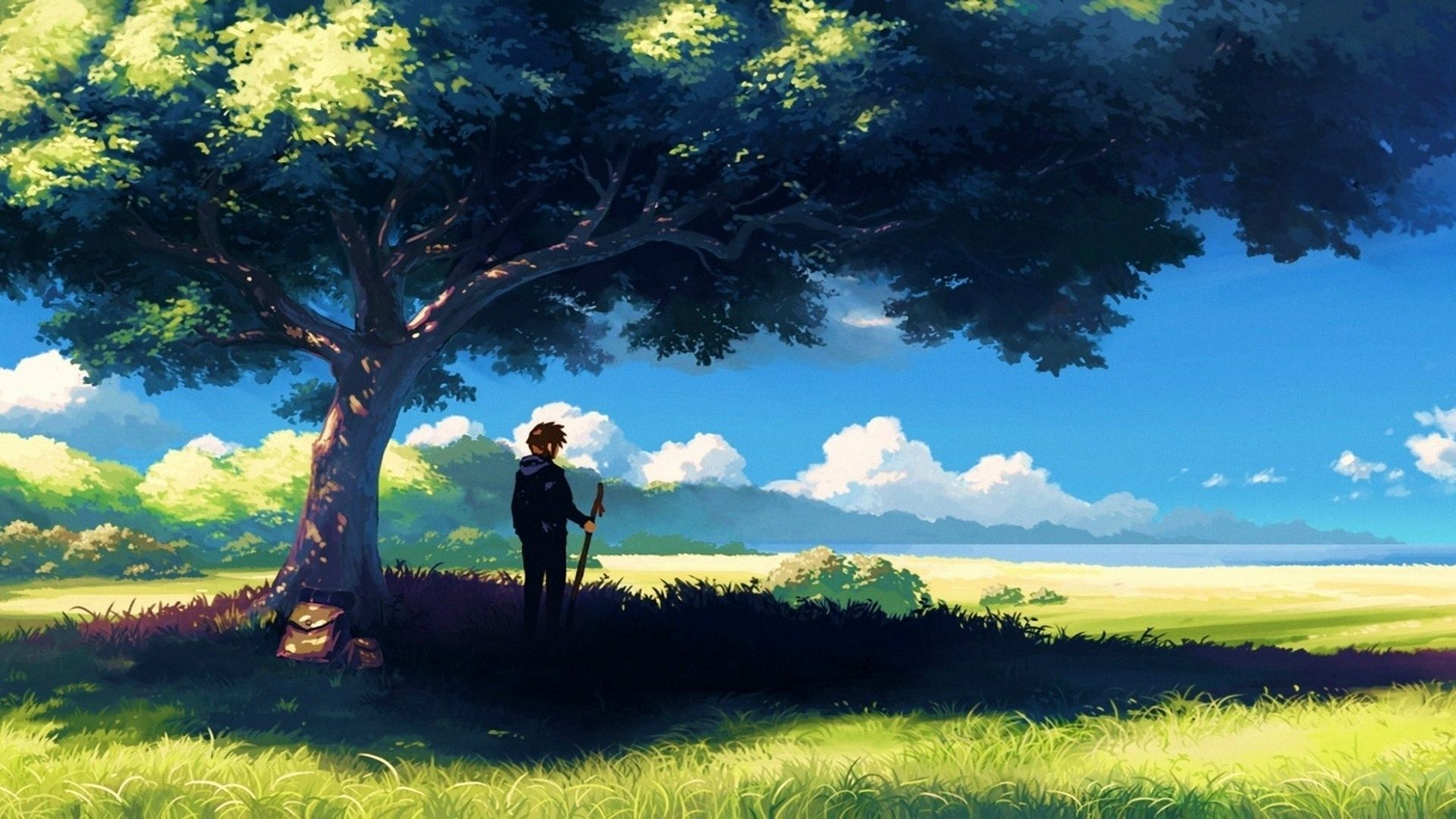 1920x1080 Anime Scenery Boy Under Tree Anime Scenery Wallpapers
