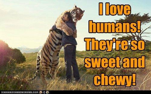 I Love Humans