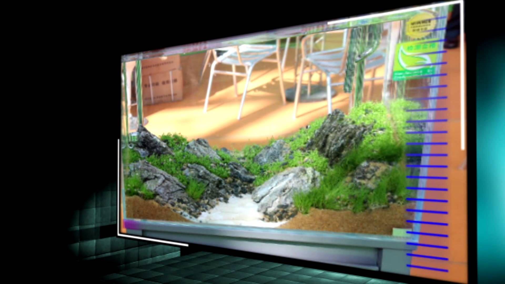 Dici aquarium company projects to try pinterest aquariums and