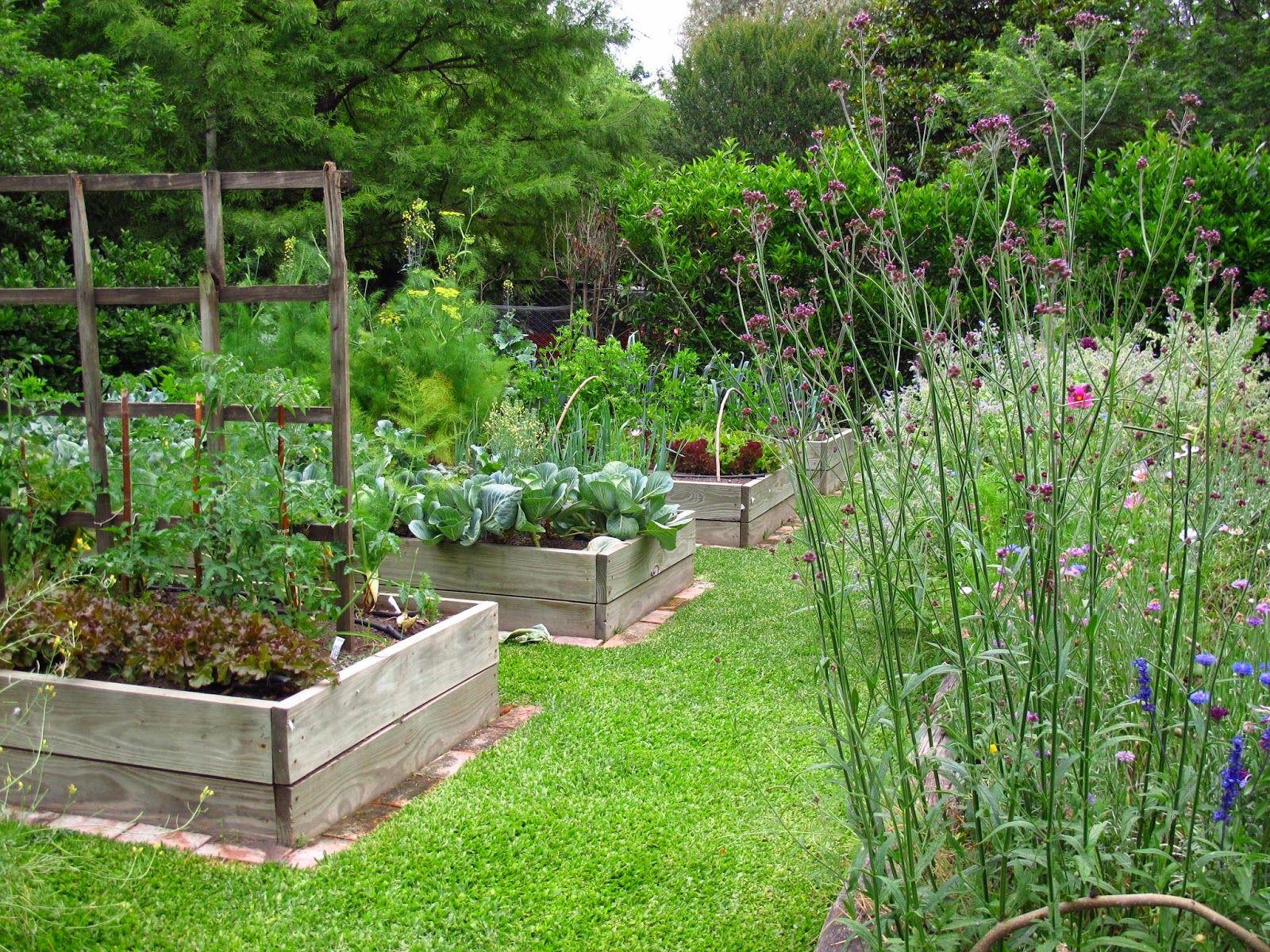 Huerta elevada en cajones de madera de pino jardin huerta huerto y jardiner a - Pequeno huerto en casa ...