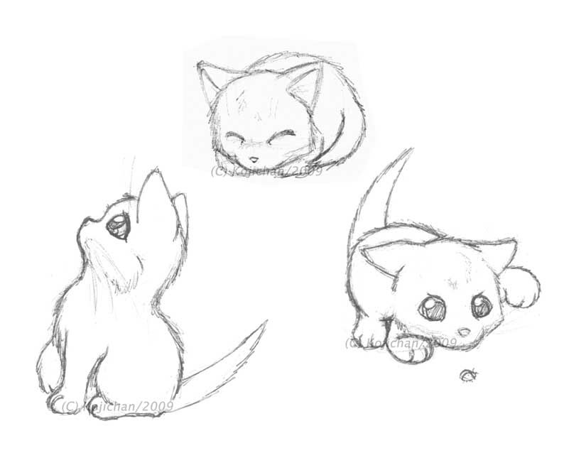 Real Sketched Drawings Just Some Super Quick Sketches Of Some Adorable Playful Kittens