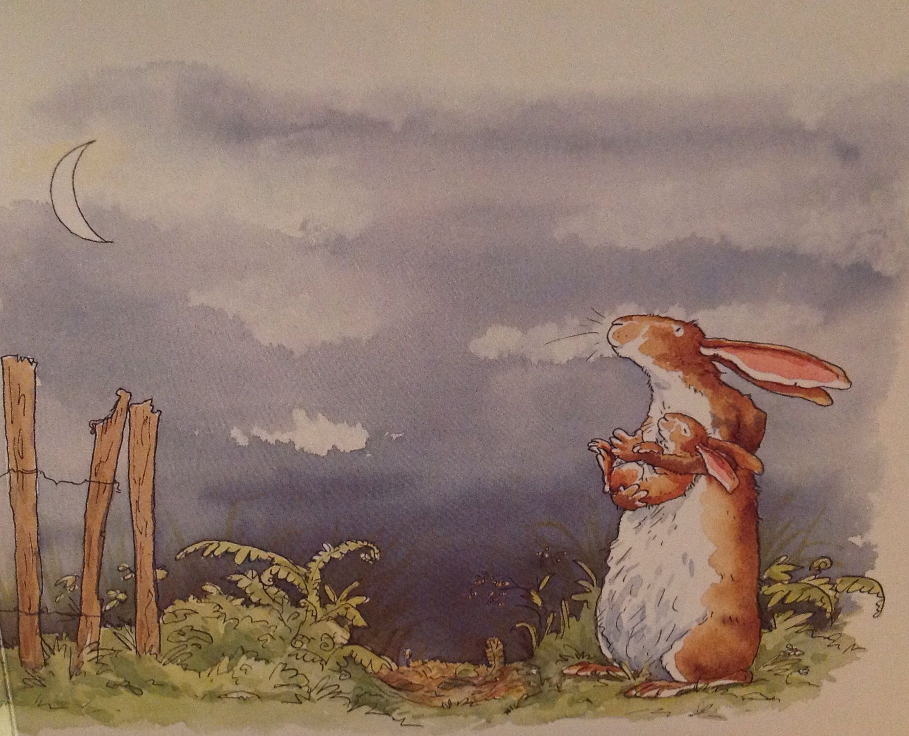 Sky. That's very far, thought Little Nutbrown Hare. He was almost too sleepy to think anymore. Then he looked beyond the thorn bushes, out into the big dark night.  Nothing could be farther than the sky.