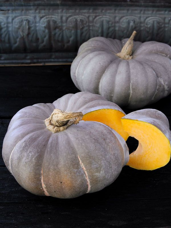 Pin By Sustainable Seed Company On Pumpkins Organic Strawberry Organic Seeds Squash Seeds