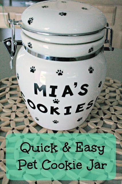 Summer Treats for the Whole Family-Pet Cookie Jar