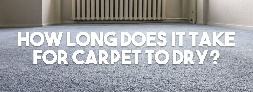 Awesome 15 Pics Of How Long Does It Take Carpet To Dry After Professional Cleaning And Descri In 2020 How To Clean Carpet Carpet Professional Cleaning