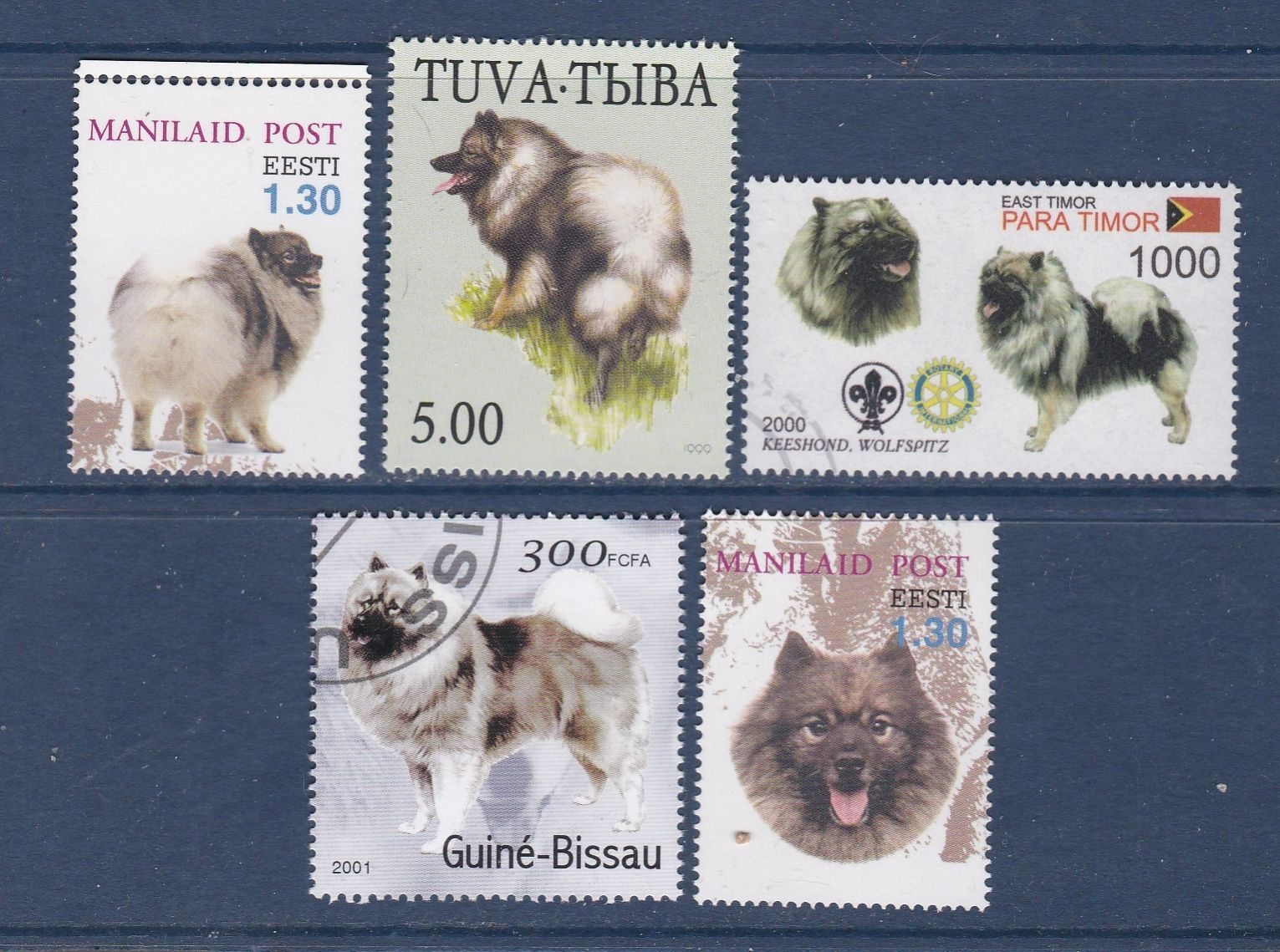 Dogs Keeshond 5 Different Stamps Ebay Wilde Tiere Tiere