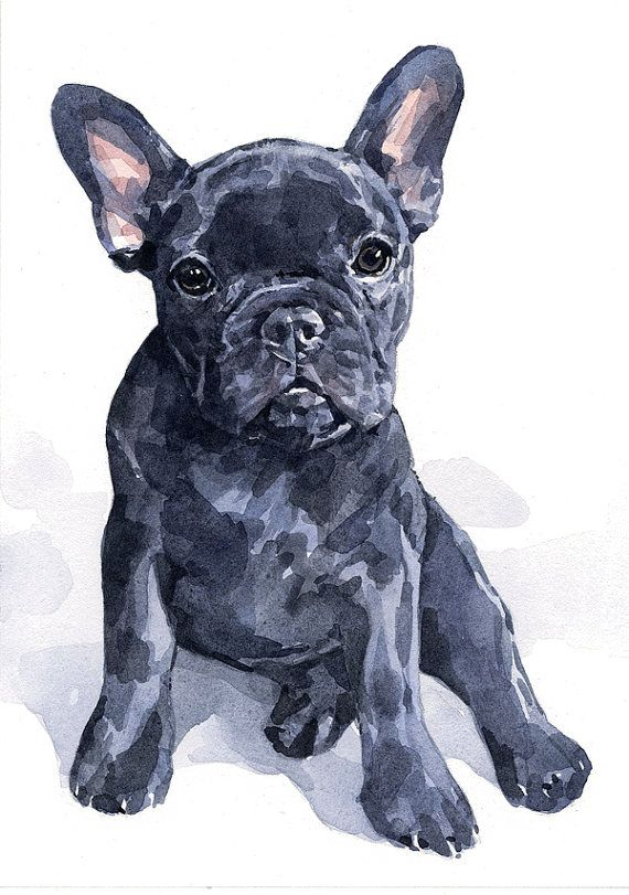 Custom Pet Portrait, realistic dog art 8x10 watercolor ...