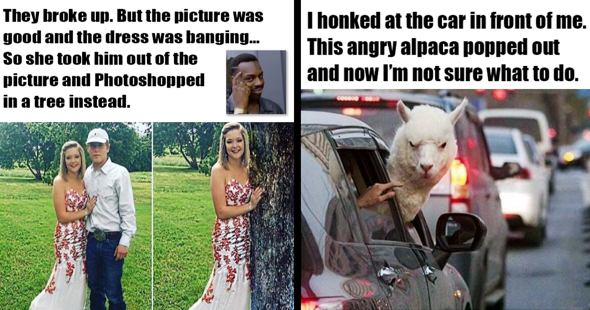31 Super Funny Memes That Will Make You Laugh Out Loud Super Funny Memes Laugh Out Loud Funny Memes