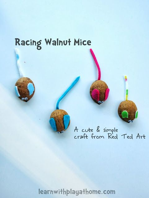 Learn with Play at home: Racing Walnut Mice. Kids Craft from Red Ted Art. Make them then race them!