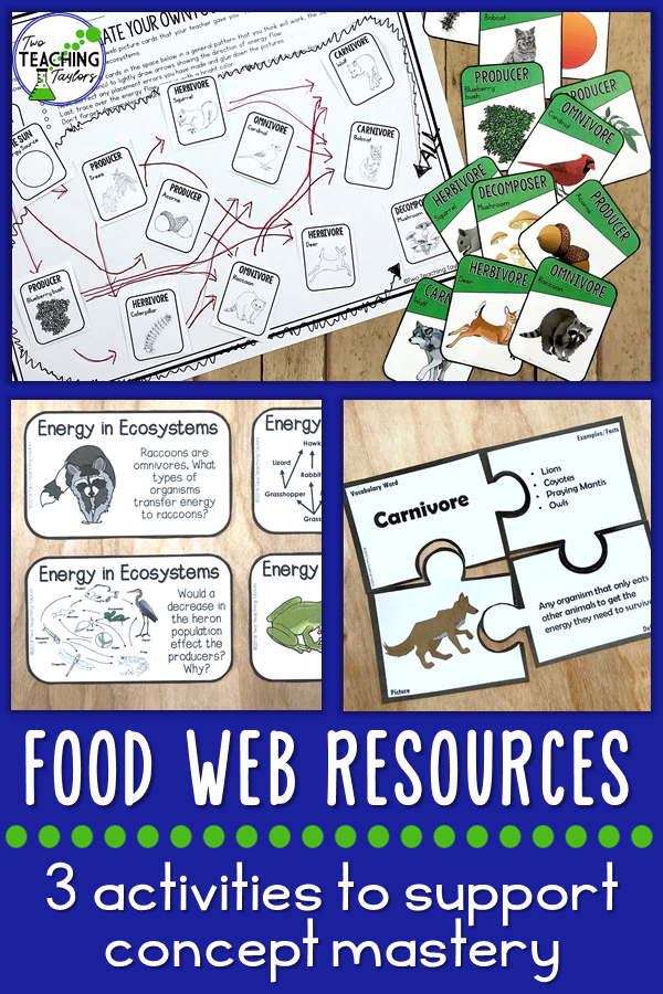 Food Webs In Ecosystems Activities Mini Bundle Two Teaching