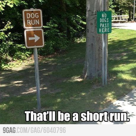 Short Race Clean Funny Pictures Funny Pictures Humor