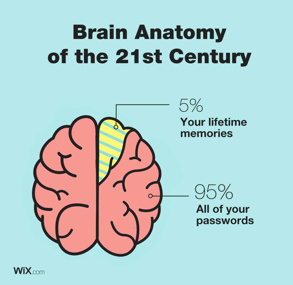 Brain Anatomy of the 21st Century | Pie Chart Jokes - Passwords ...