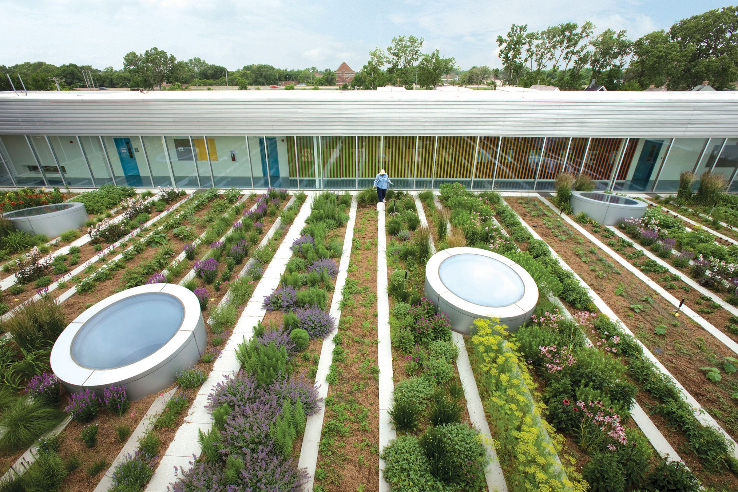 rooftop haven for urban agriculture chicago usa hoerr schaudt landscape architects chicago