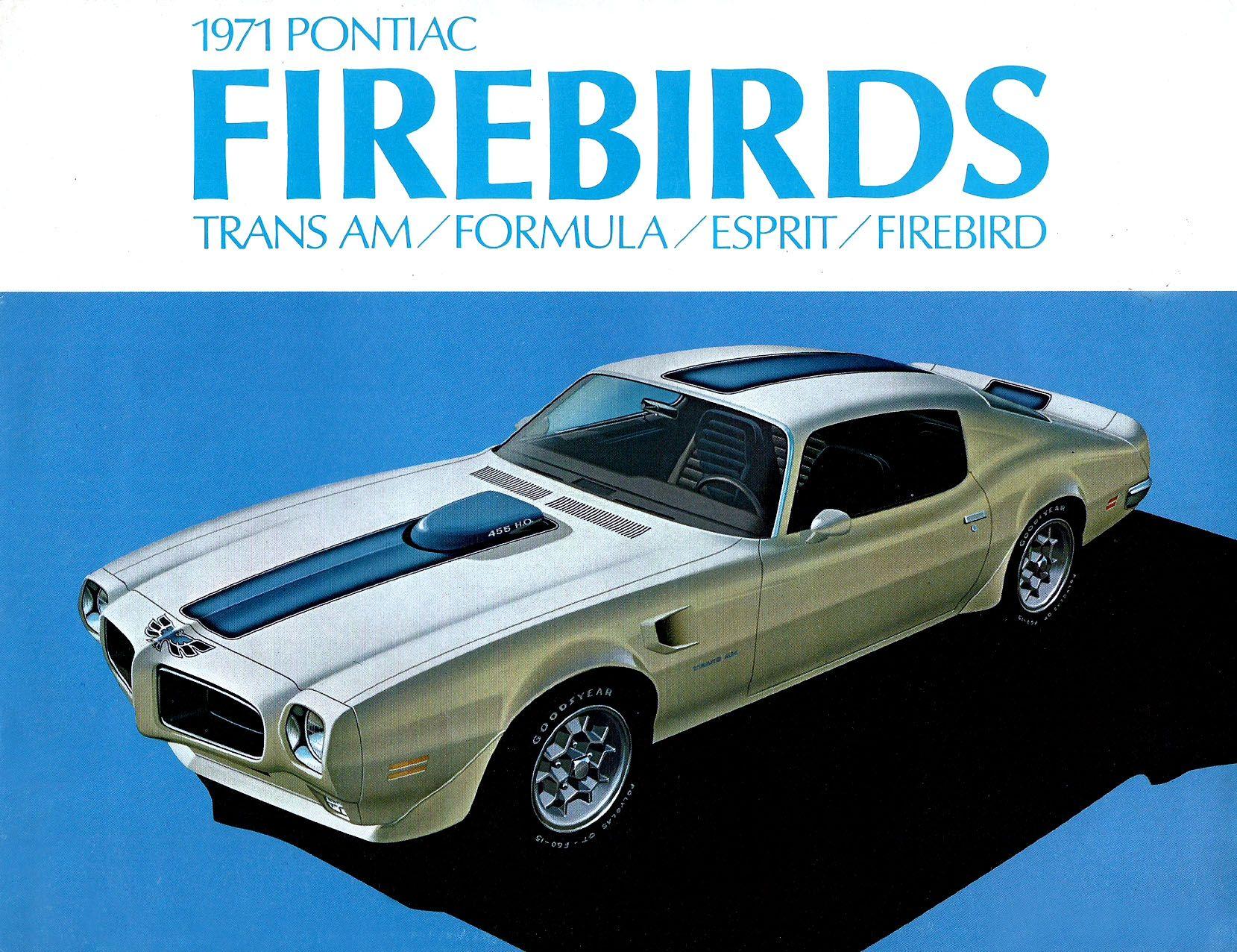 Pontiac firebird vintage parts something