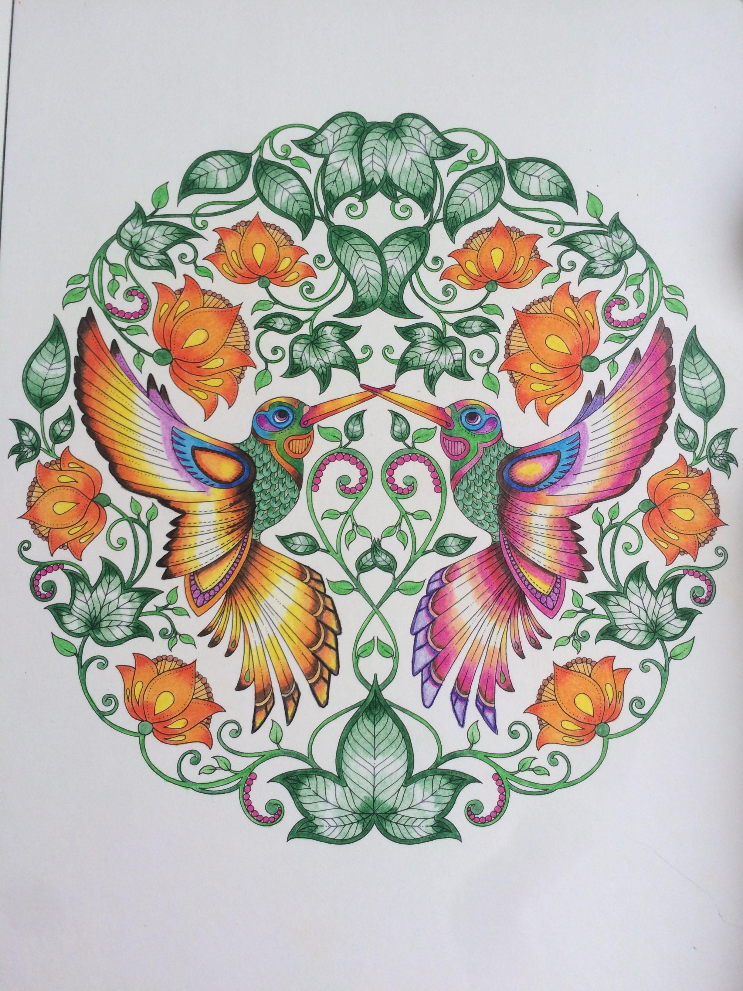 No Facebook Adult Coloring Pages Books Colored Pencils Johanna Basford Secret Garden Colouring Birds