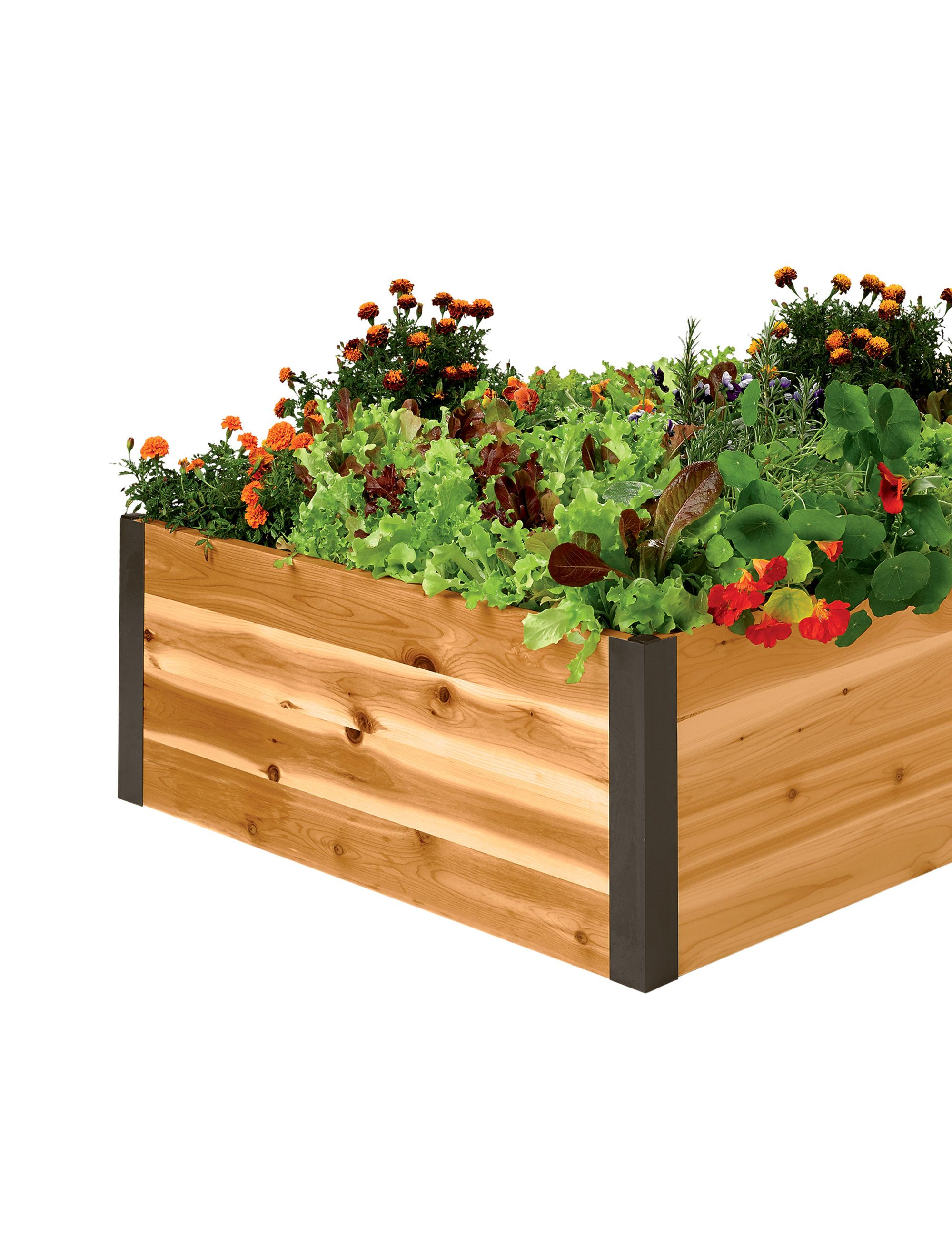 "Cedar Raised Beds 15"" Tall Deep Root Cedar Raised Beds 3"