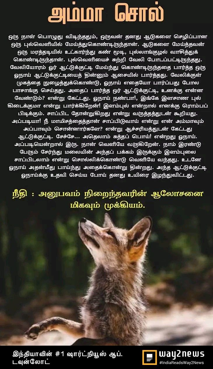 Idea by Lavanya on Tamil quotes | Short stories, Story ...