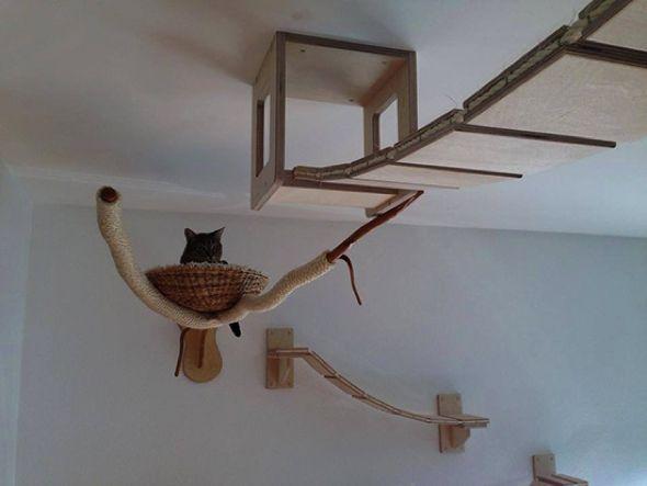 arbre a chat avec pont