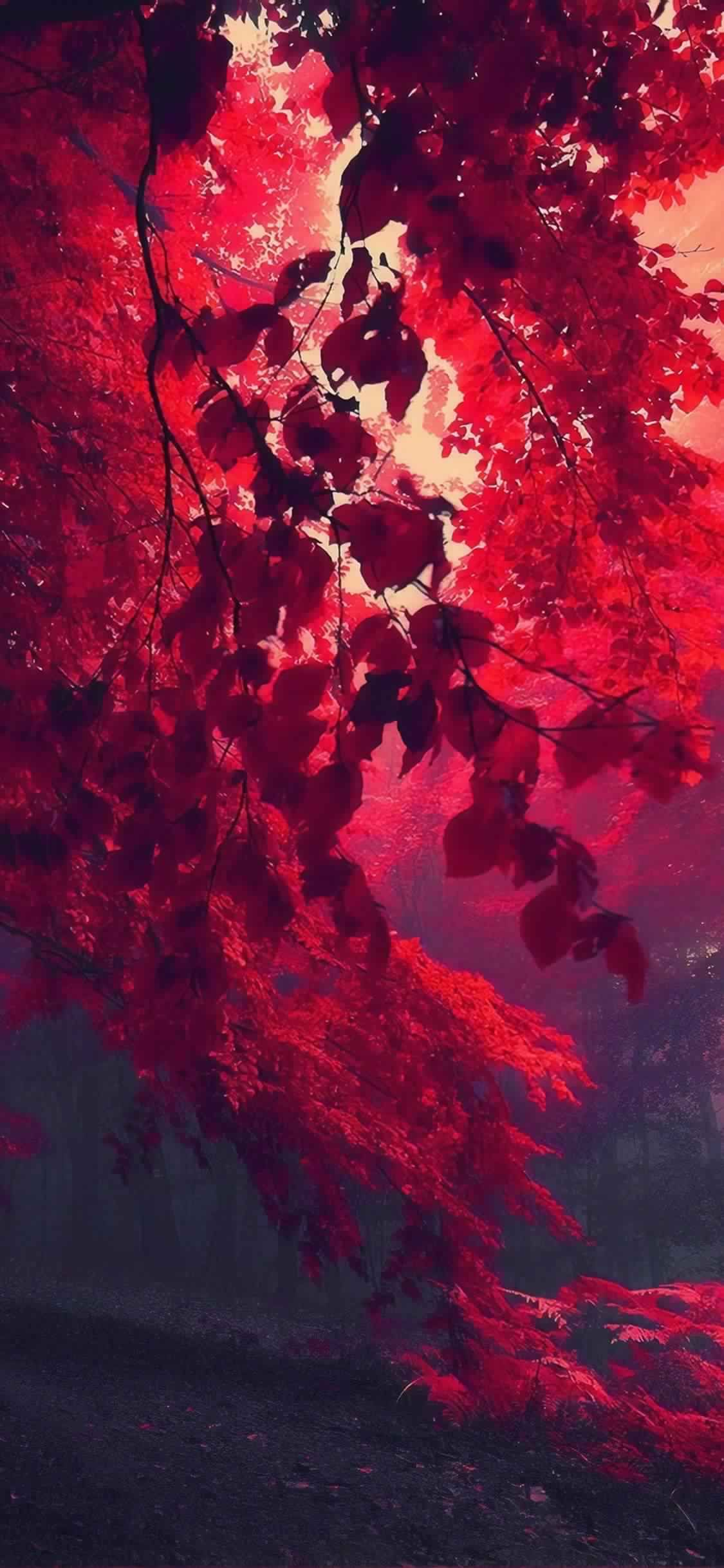 Iphone 11 Wallpaper Red Autumn 4k Hd Download Free Hd Wallpaper Screensavers Dw Gaming Com Download Free Hd Wallpapers Https Ift Tt 2nb3kaz Htt ศ ลปะ