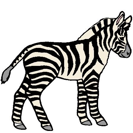 Z bre recherche google z bre cheval ne pinterest - Zebre a dessiner ...