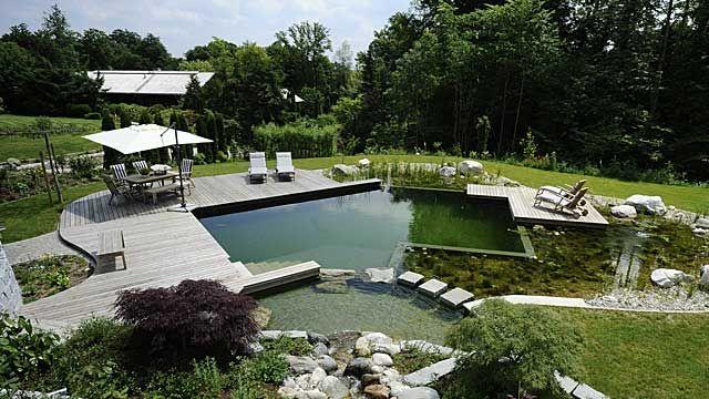 Ein Schwimmteich im Garten braucht recht viel Platz. (Quelle: dpa/ Schleitzer, Gärtner von Eden)