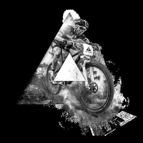 Mtb Vector Logo Google Search Bike Illustration Mountain Biking Bull Logo