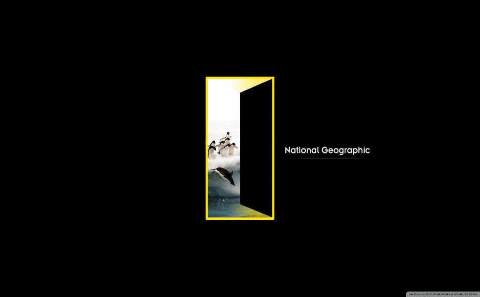 National geographic logo hd wallpaper wallpapers in 2019 - National geographic wild wallpapers ...