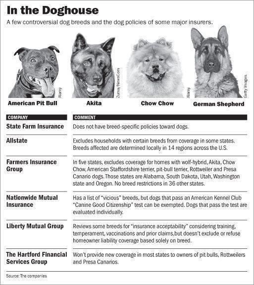 I Am A Dog Dangerous Dogs Dogs Pitbulls