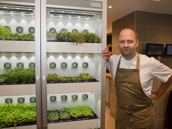 Evogro Evogro Plant Growing System Microgreens