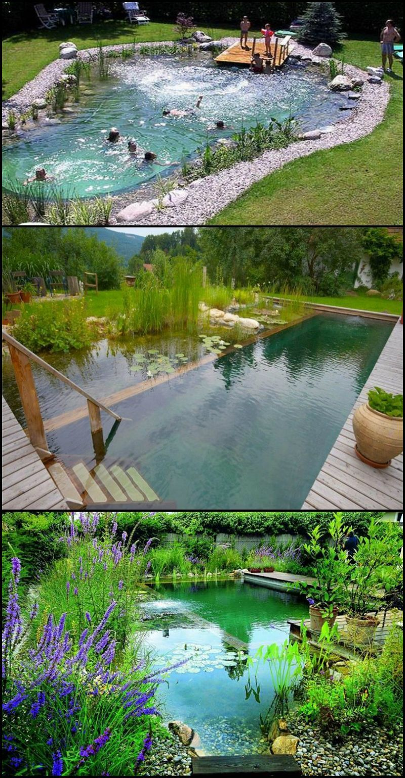 Pin By Victoria Valentine On Dream House Pinterest Natural Swimming Ponds Ponds Backyard